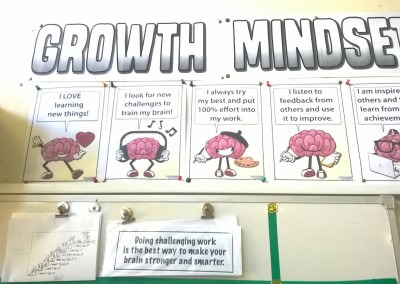 The Growth Mindset Pack (sent by Jo)