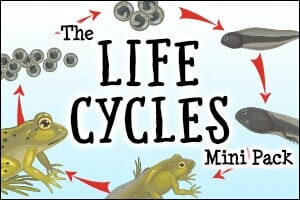 The Life Cycles Mini Pack