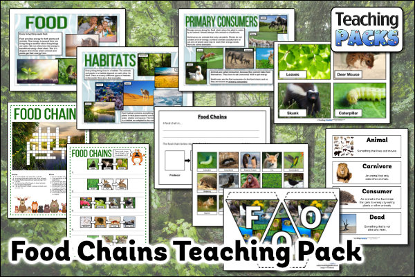 The Food Chains Pack