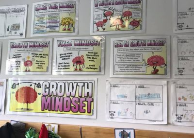 The Growth Mindset Pack (sent by Alison)