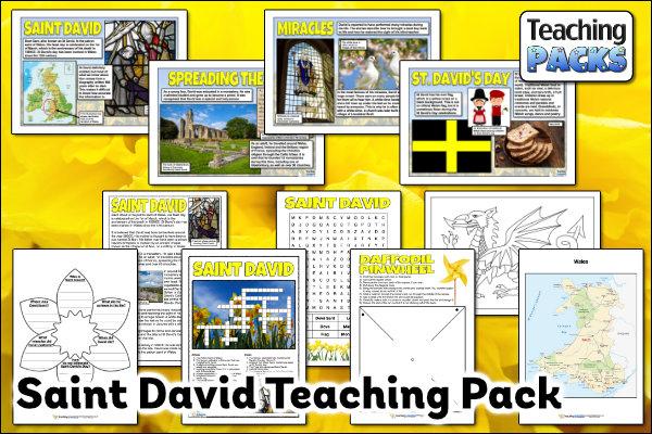 The Saint David Pack