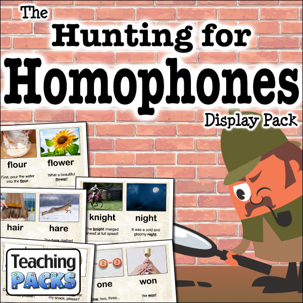 The Hunting for Homophones Display Pack