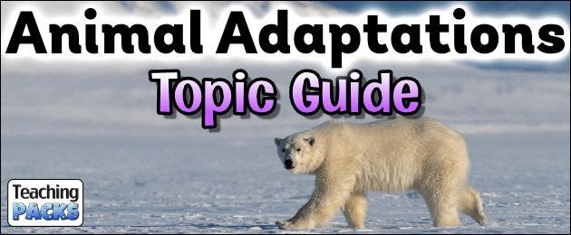 Animal Adaptations Topic Guide