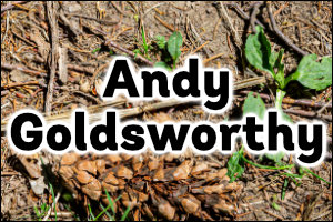Andy Goldsworthy Topic Guide for Teachers