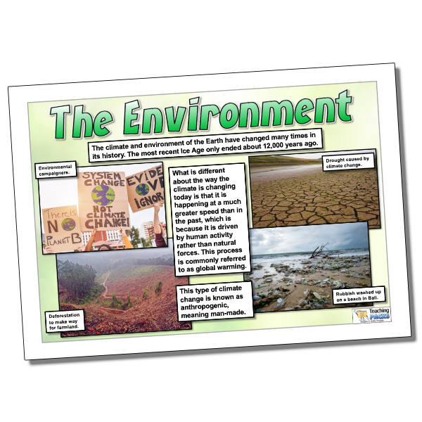 The Environment Guide